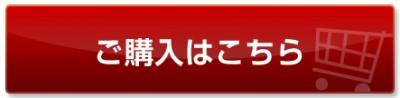 btn01_red_01